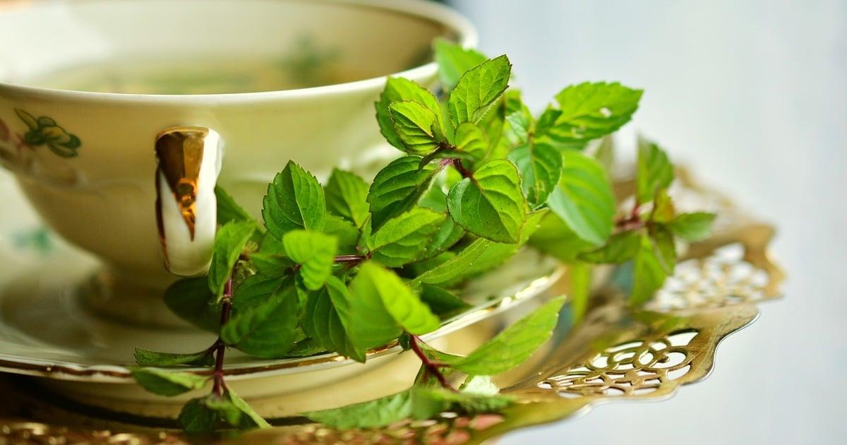 Chá com ervas - Entenda as causas da pulpite, seus sintomas e tratamentos